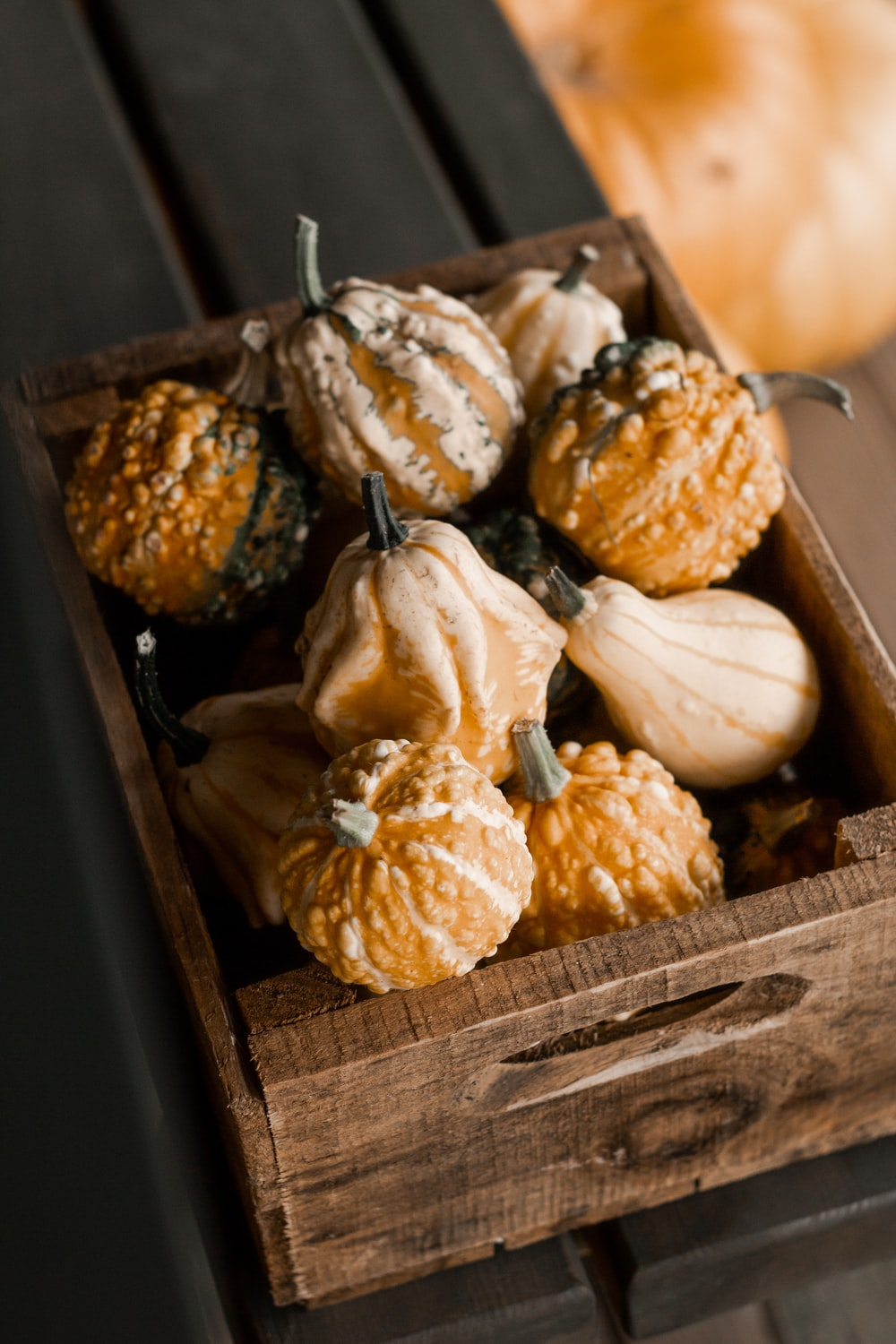 white and brown garlic on brown wooden tray