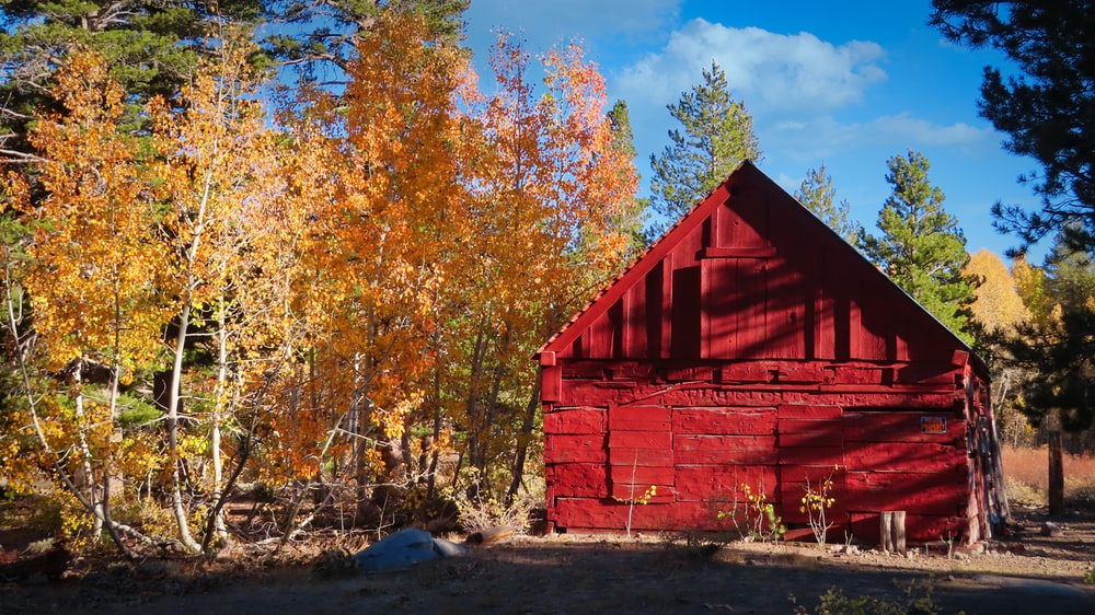 red wooden barn near trees during daytime