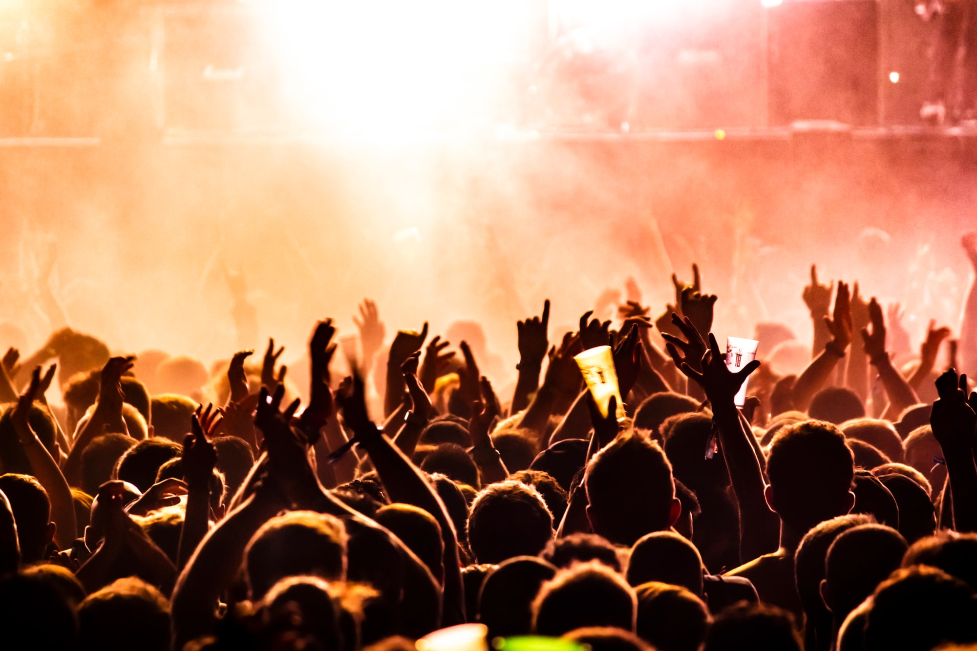 Crowd of people cheering at a live concert