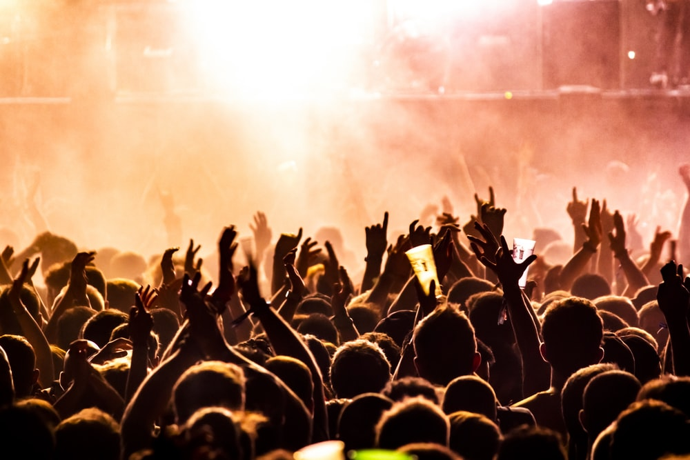 people raising their hands on concert