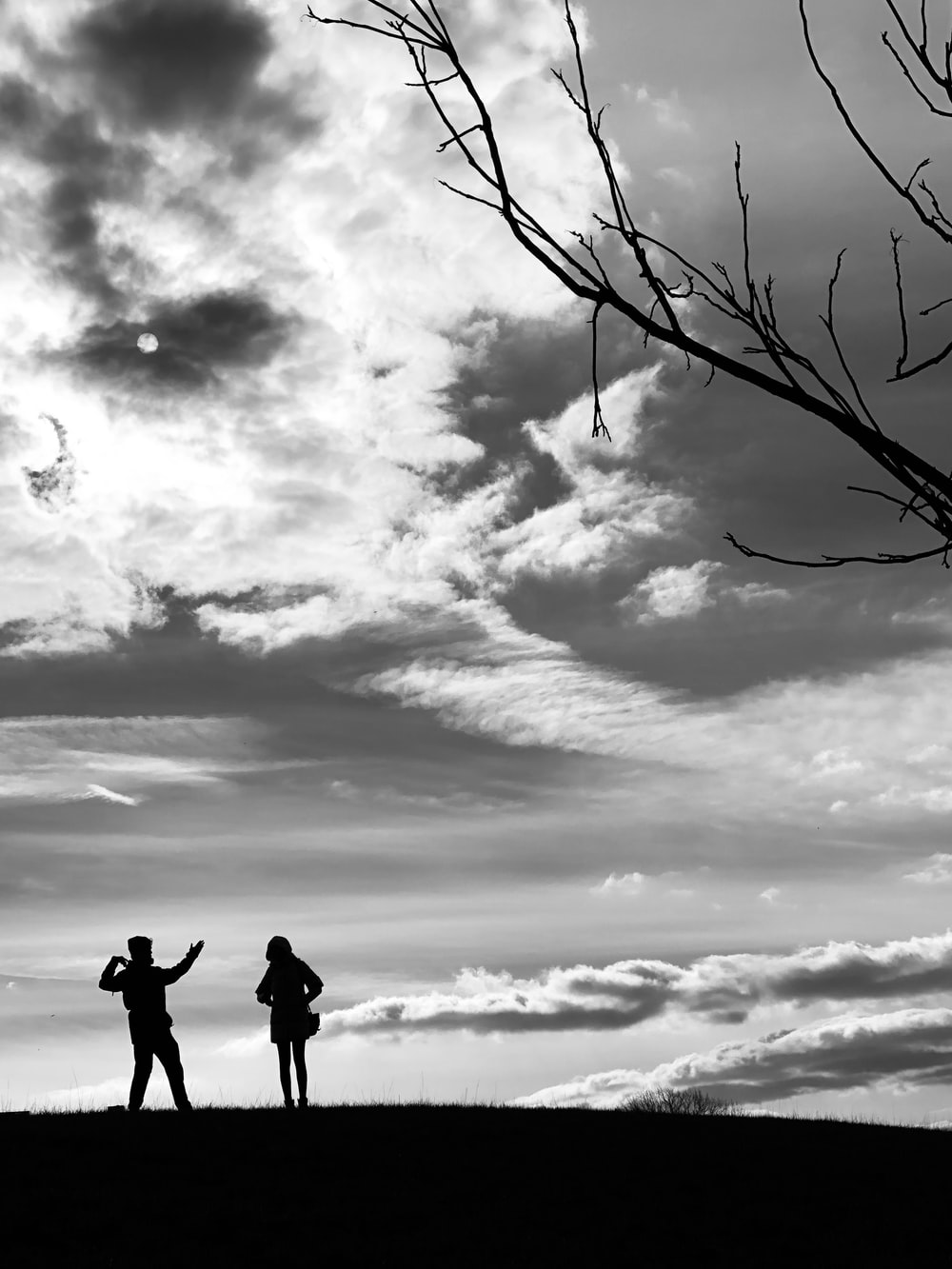 silhouette of 2 person standing on tree branch under cloudy sky during daytime