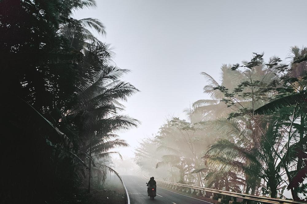 man in black jacket standing on bridge during daytime