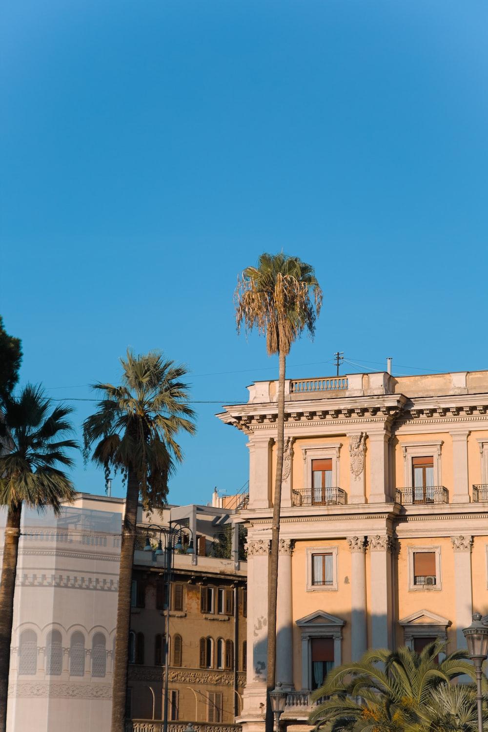 beige concrete building near palm tree under blue sky during daytime