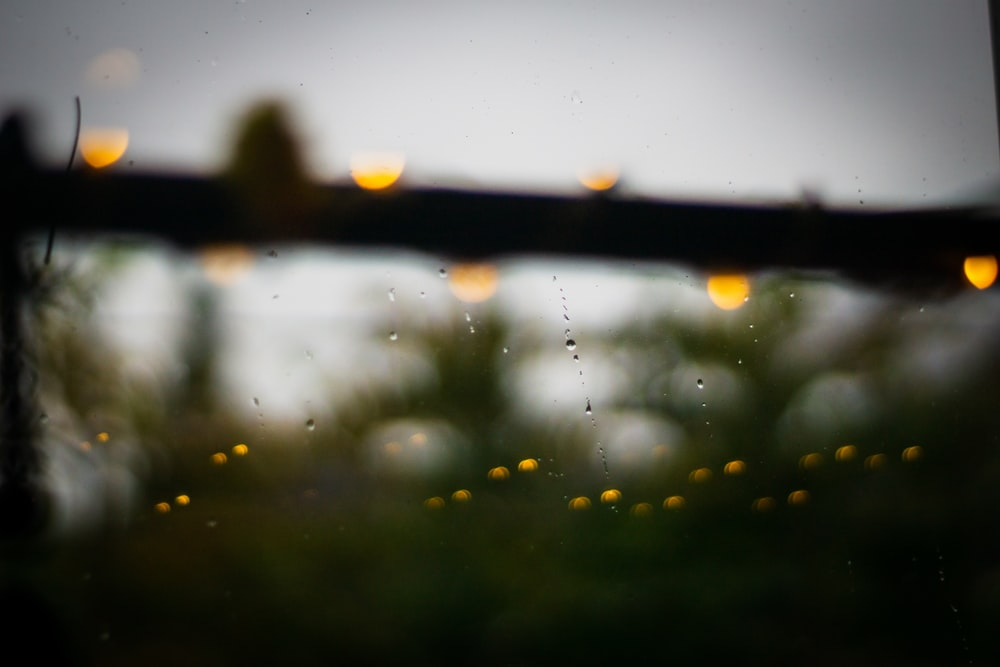 water droplets on brown wooden fence during daytime