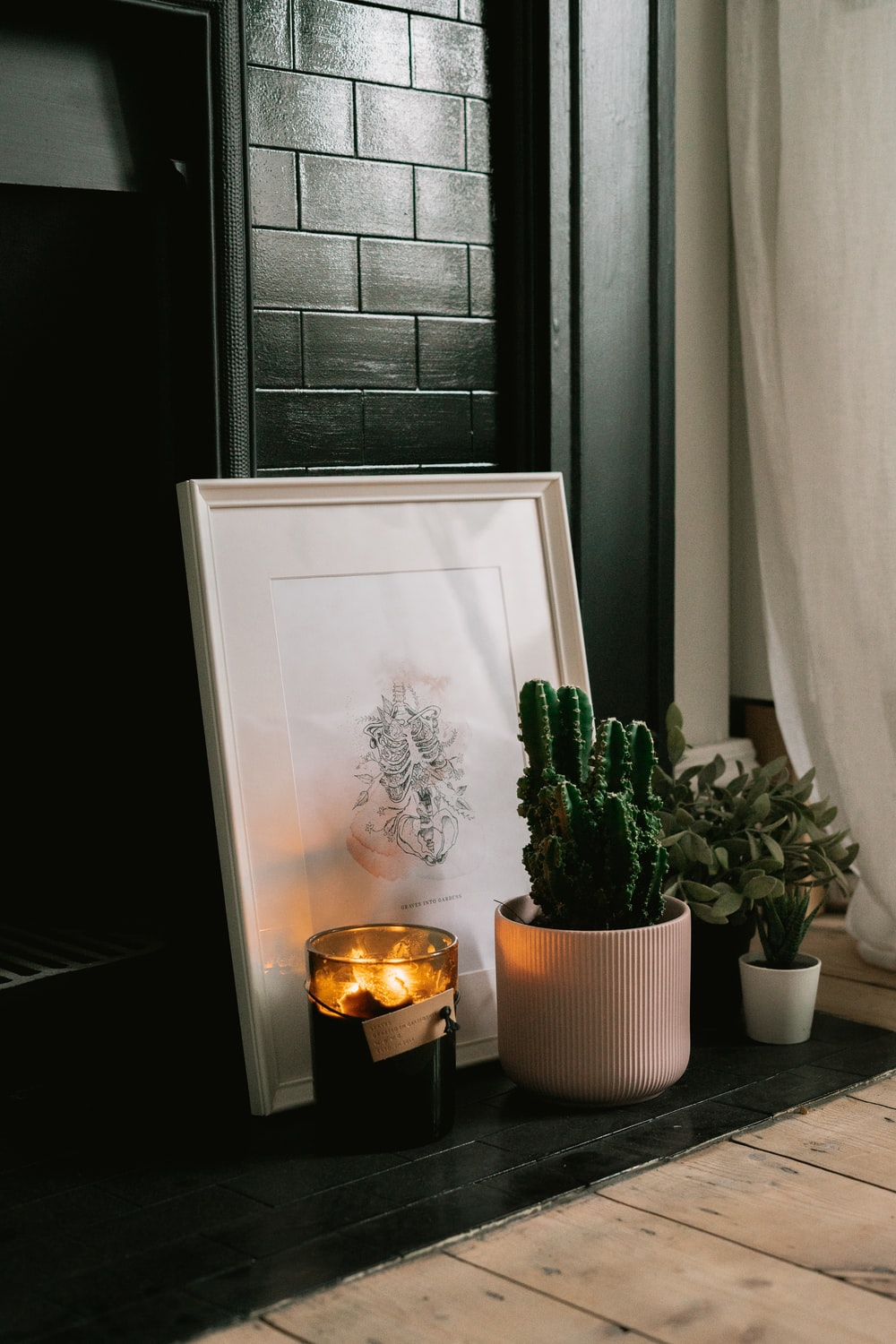 green cactus plant on white wooden table