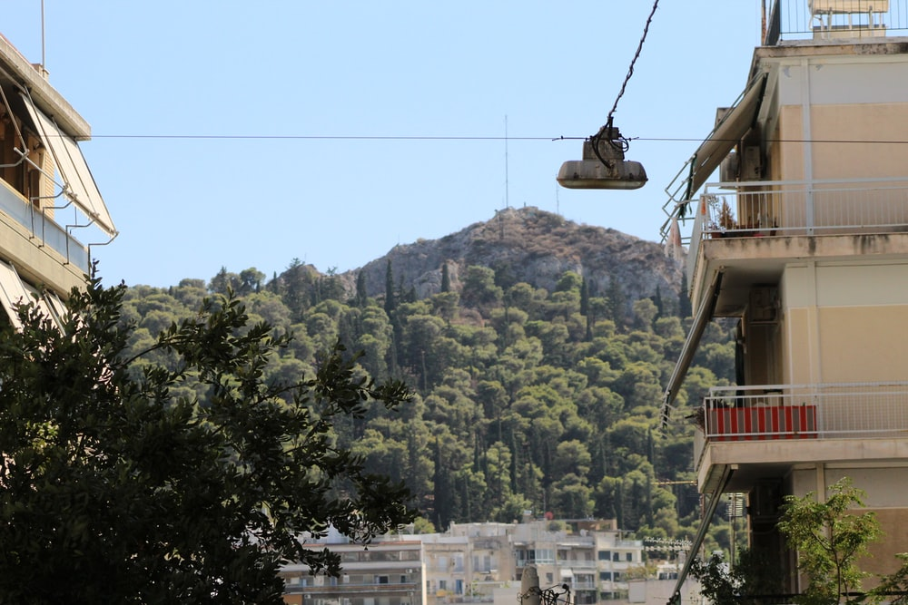 cable car over green trees during daytime