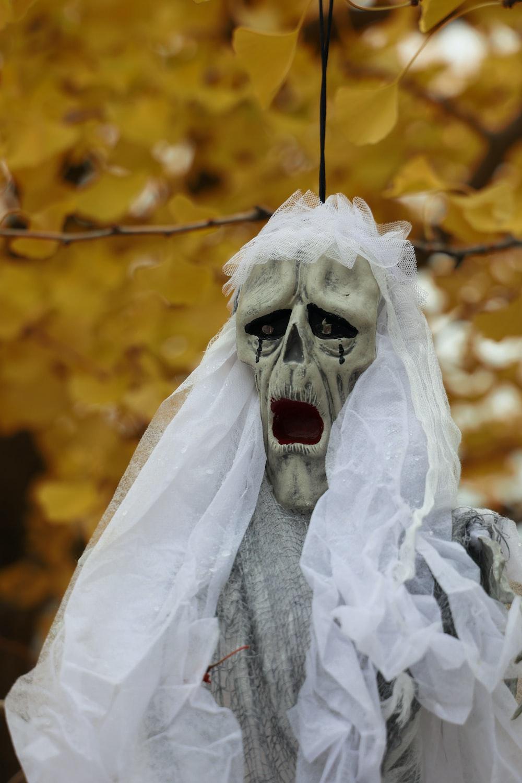 white skull on brown tree branch