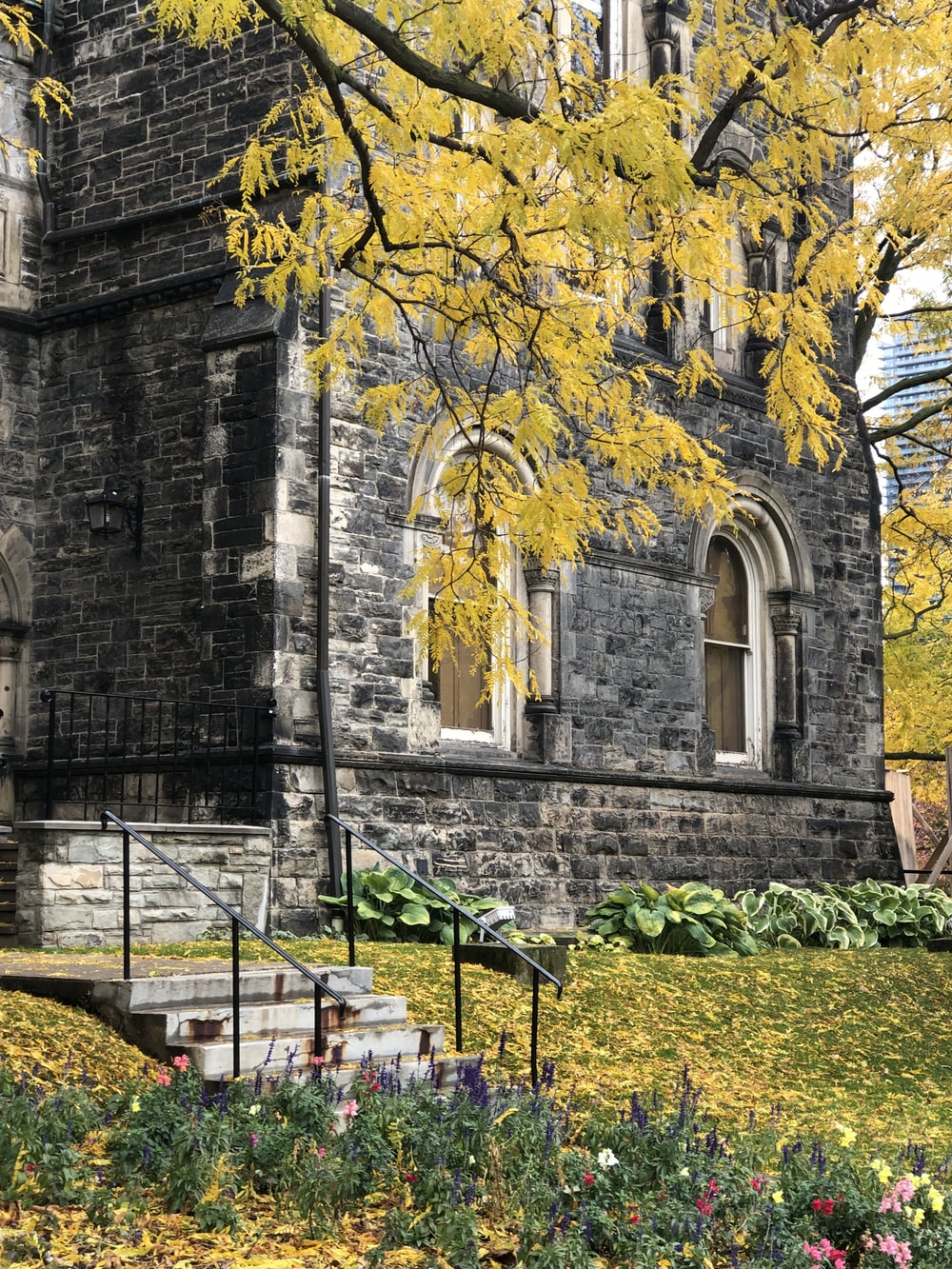 large hart house building with arched windows, stairs and yellow leaves handing from a tree