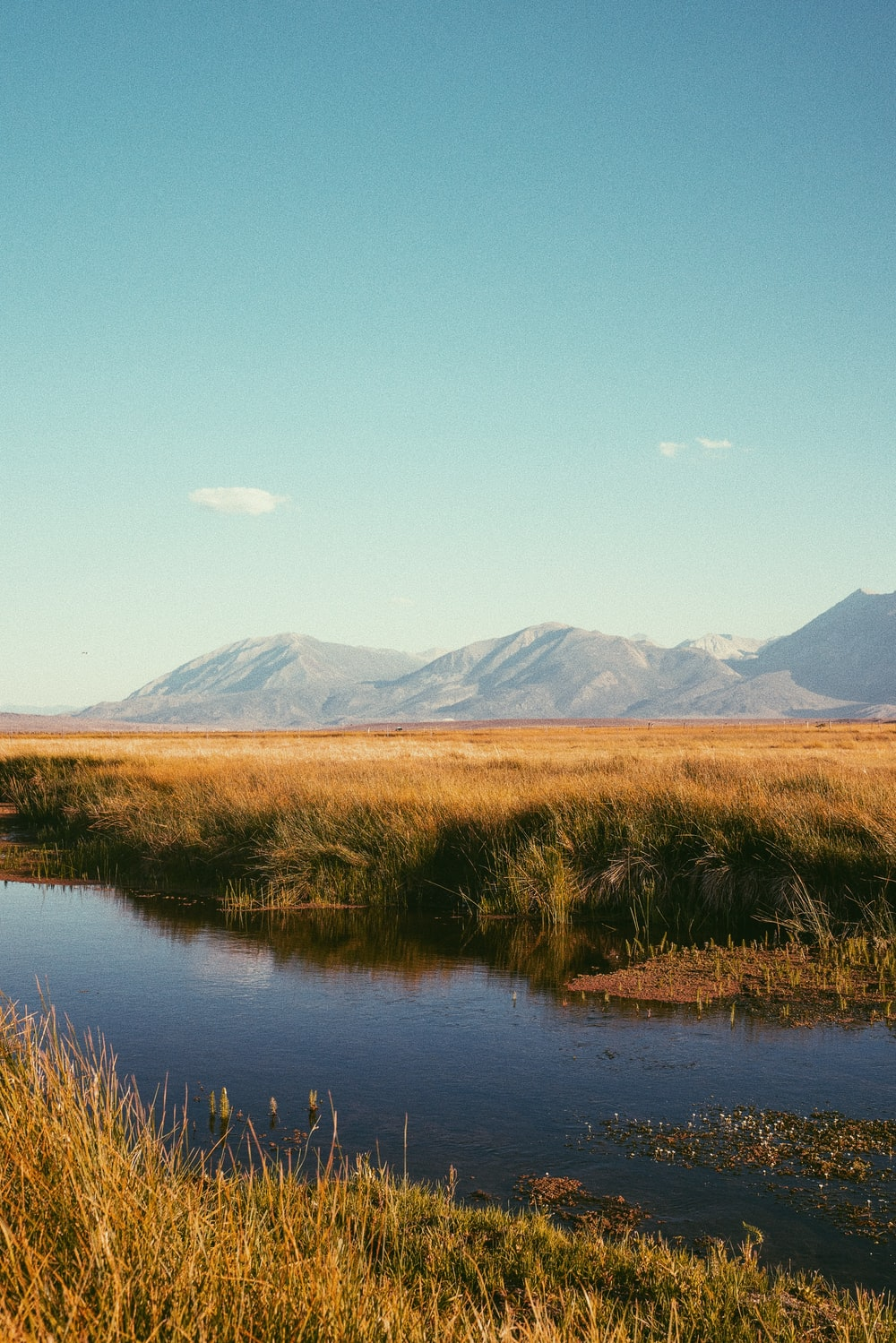 brown grass field near lake and mountains during daytime