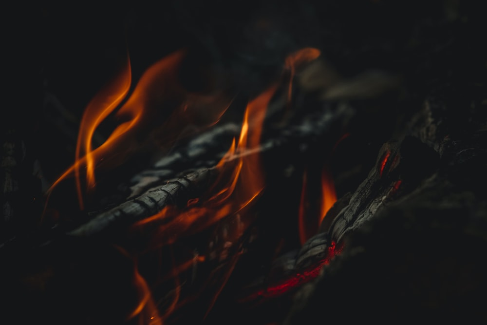 burning wood in close up photography