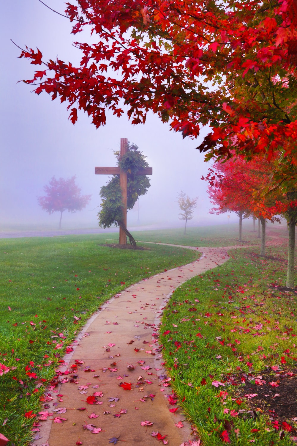 brown wooden cross on green grass field near red leaf tree during daytime