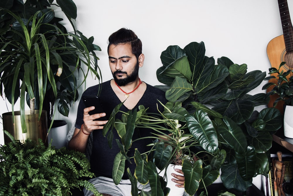man in black polo shirt standing beside green plant
