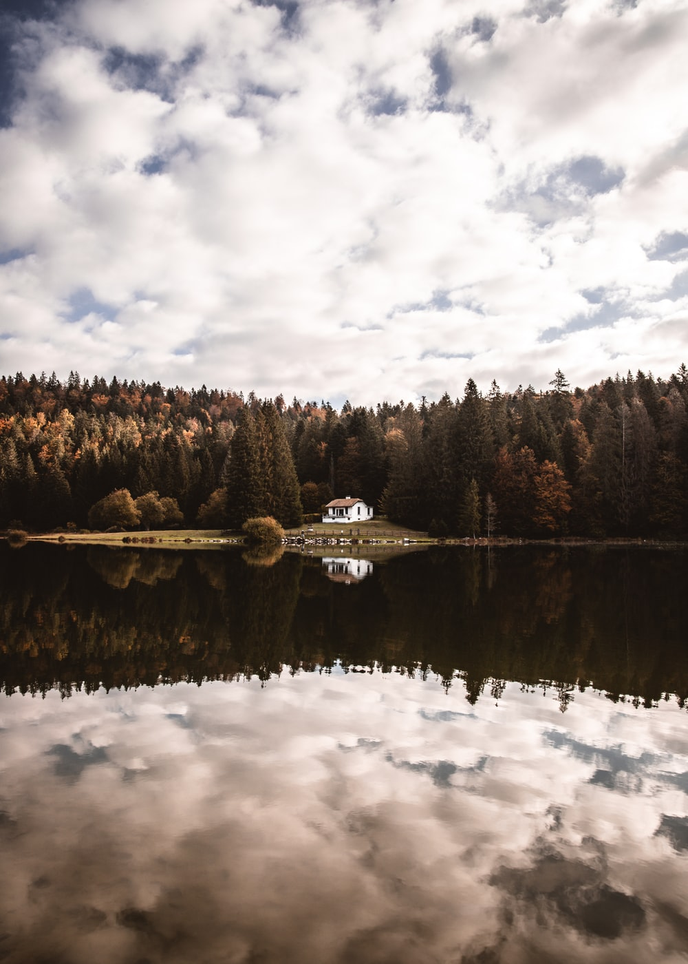 white and black boat on lake near green trees under white clouds and blue sky during