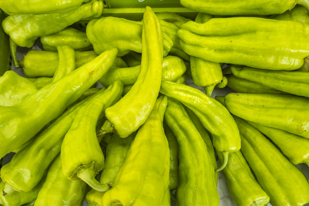 green chili pepper in close up photography