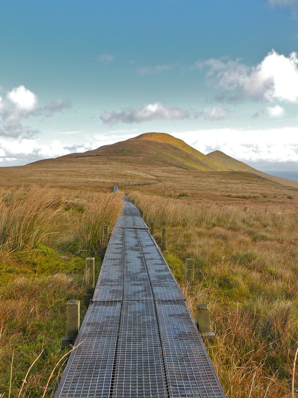 brown wooden pathway between green grass field during daytime