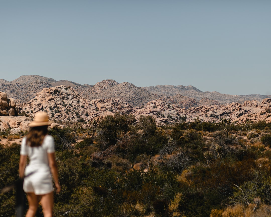 The Vastness of Joshua Tree - unsplash