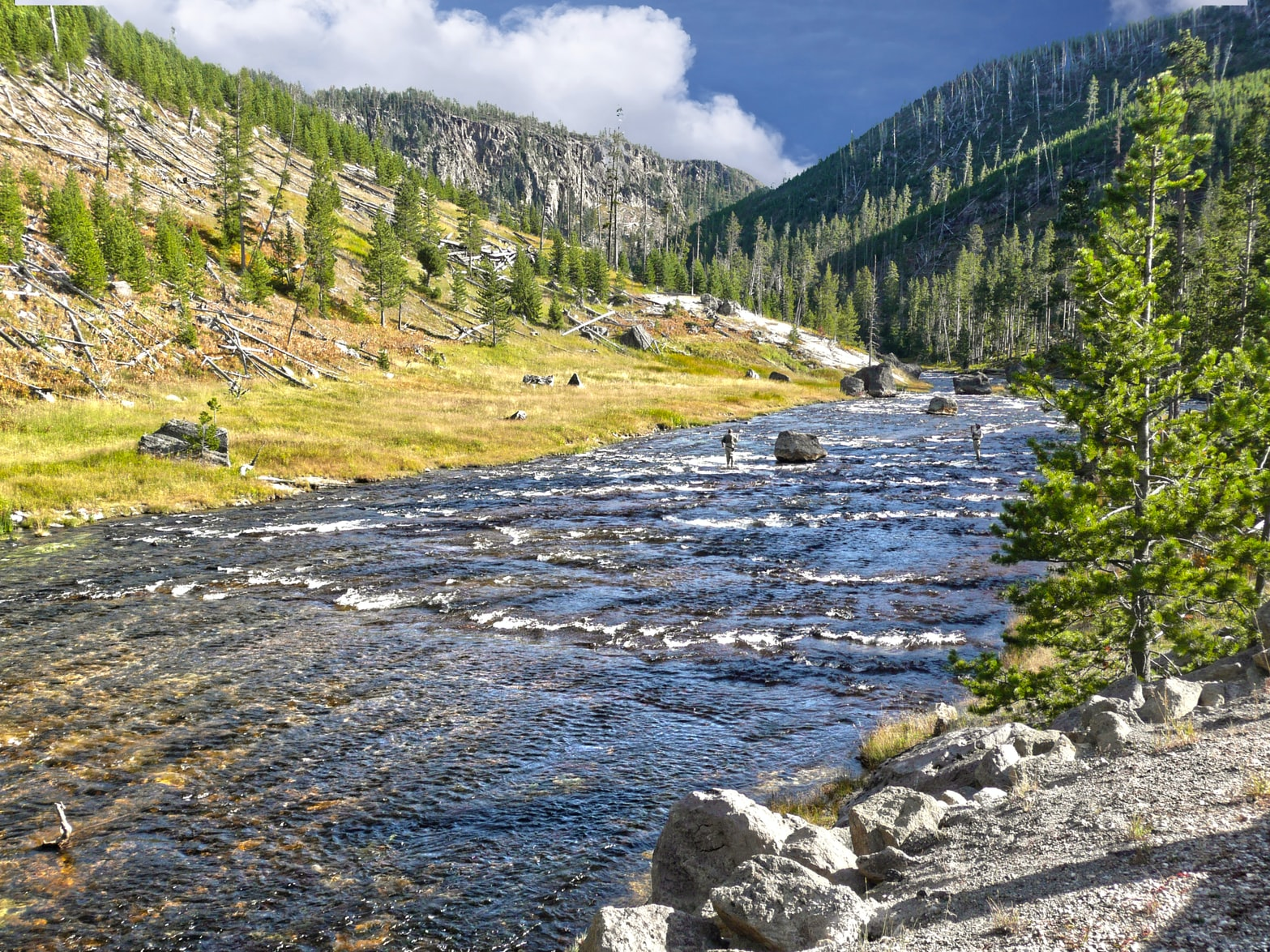 Yellowstone Fishing License Cost Doubles