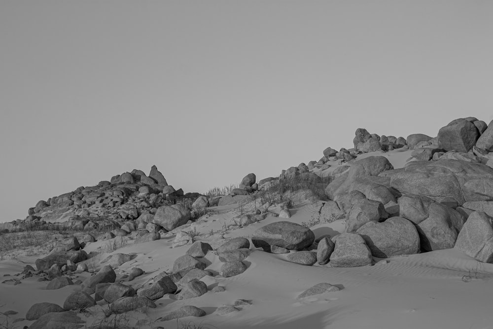 gray scale photo of rocks on beach
