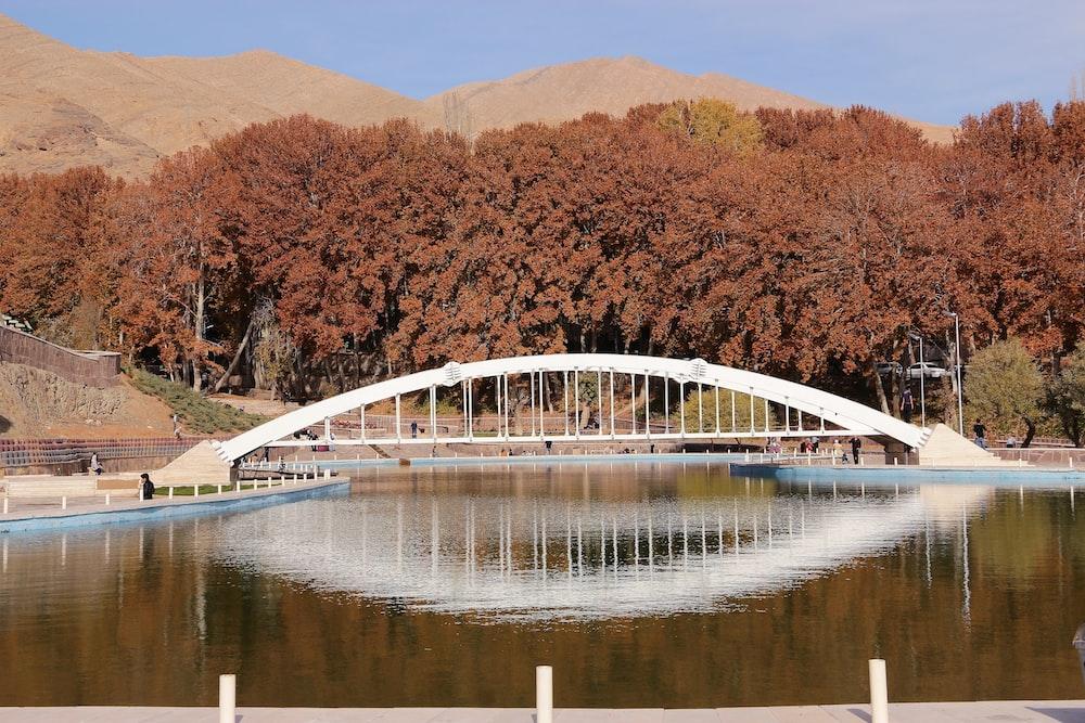 white and blue bridge over river