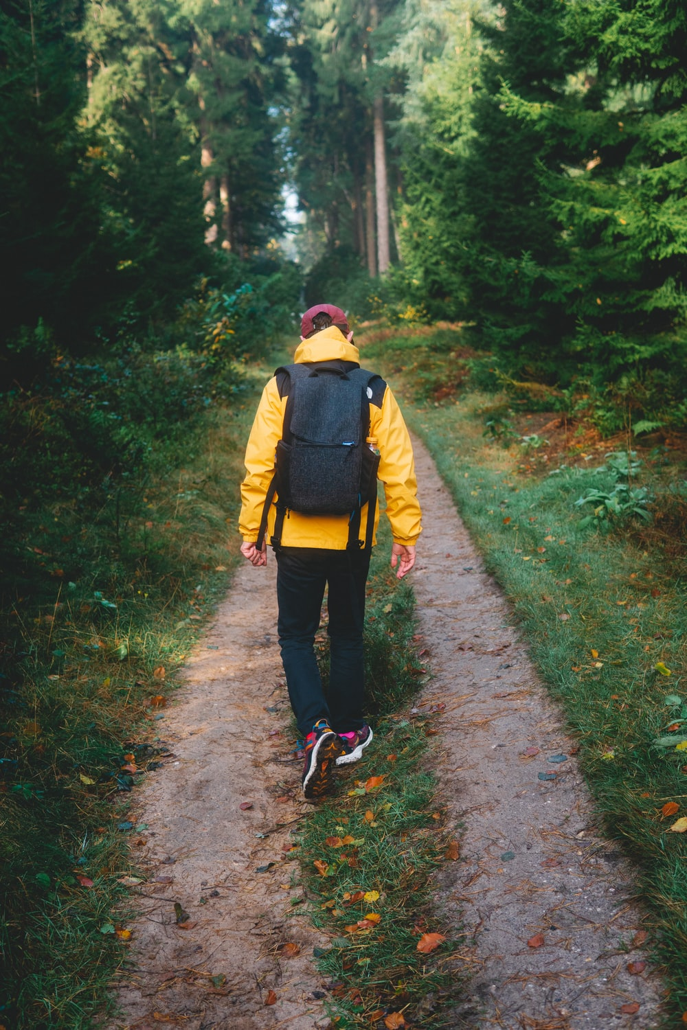 person in yellow jacket walking on pathway