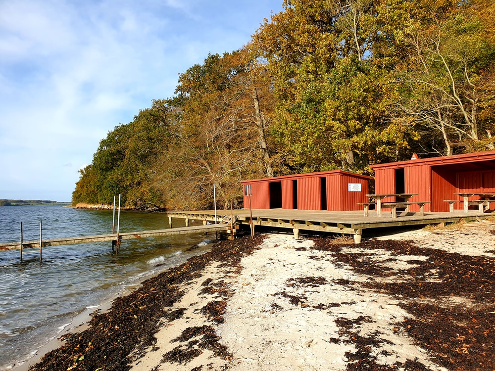 red and white wooden house near body of water during daytime