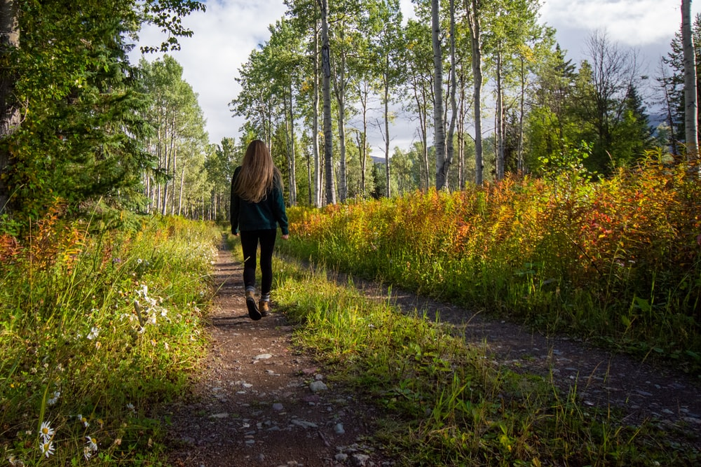 woman in black jacket walking on pathway between green grass and trees during daytime