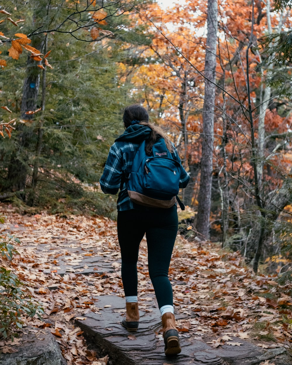 woman in black jacket and black pants walking on forest during daytime