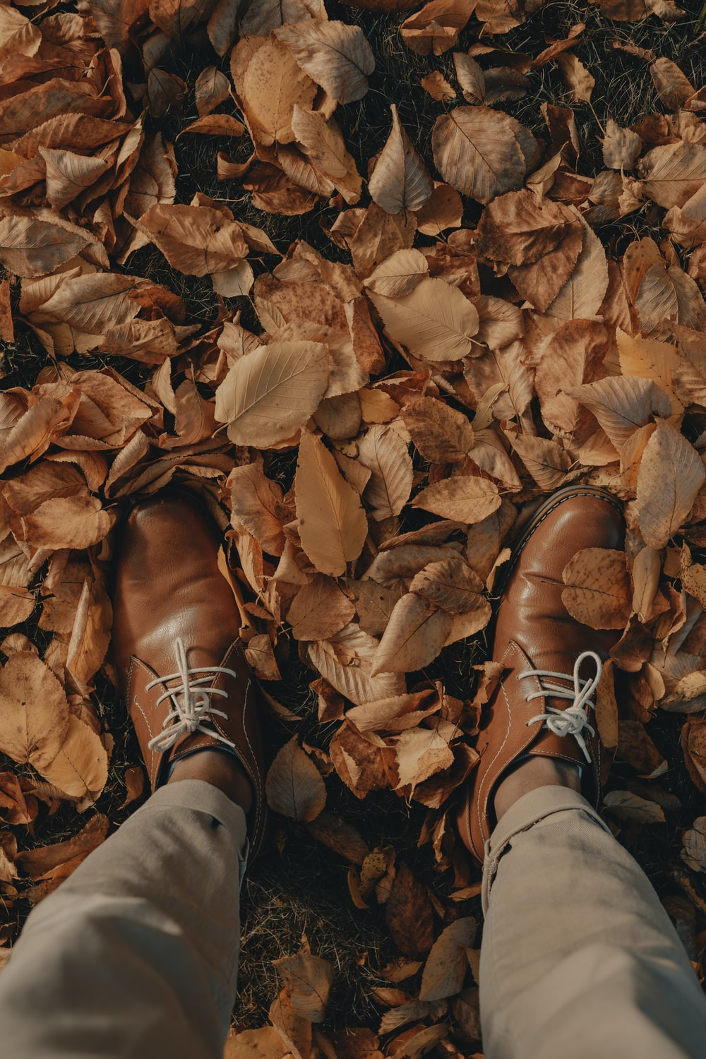 person wearing brown leather shoes standing on dried leaves