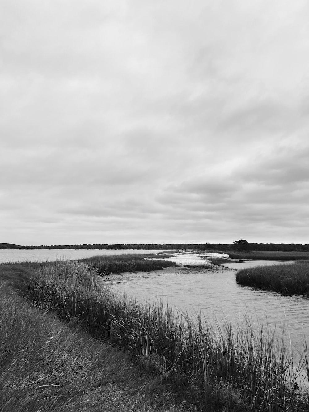 grayscale photo of body of water near grass field