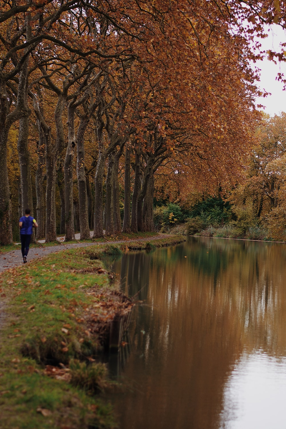 person in blue jacket walking on pathway near river during daytime