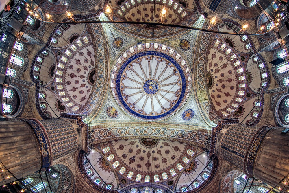 blue and brown floral ceiling