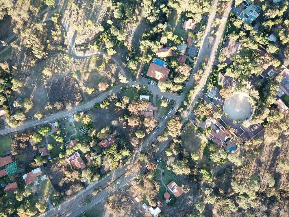 aerial view of green trees and houses during daytime