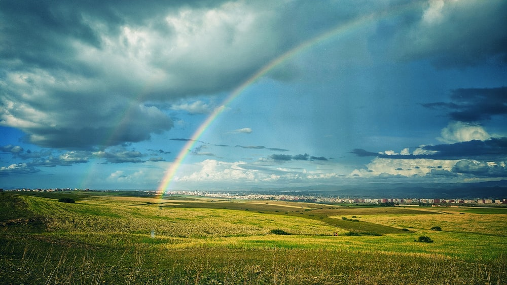 green grass field under rainbow and blue sky during daytime