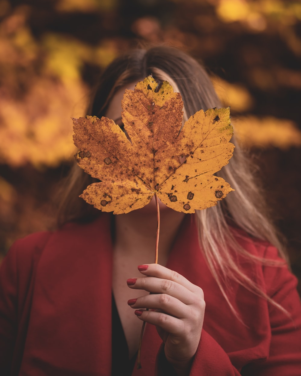 woman in red long sleeve shirt holding yellow maple leaf