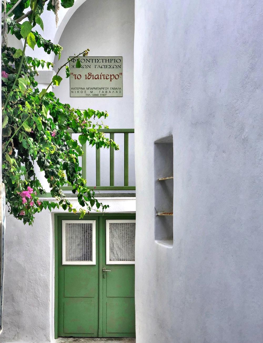 green wooden door with green plant