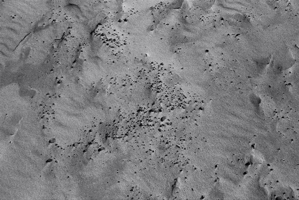 gray sand with water during daytime