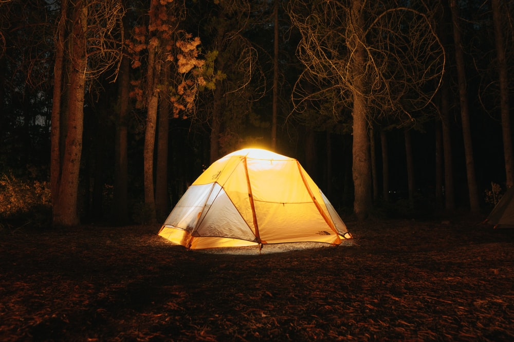 yellow and black tent in forest during night time