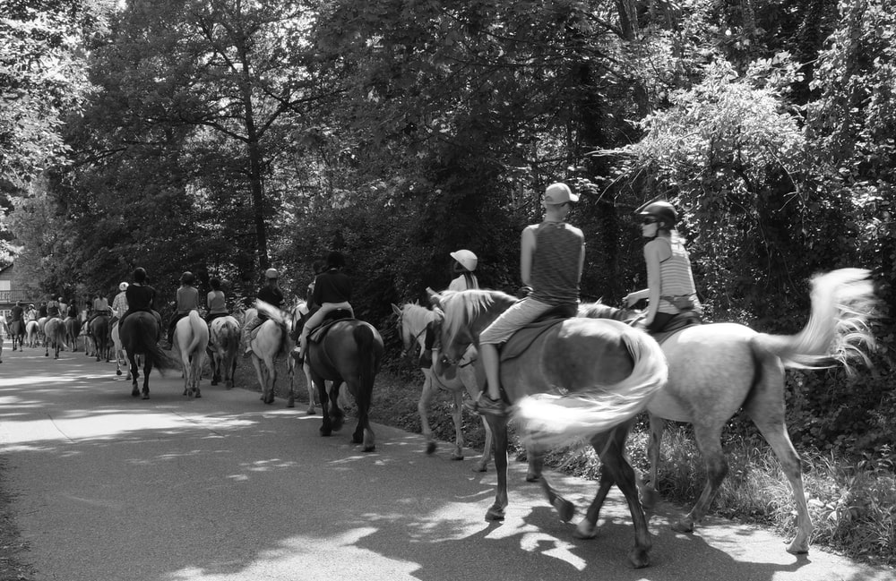 grayscale photo of people riding horses