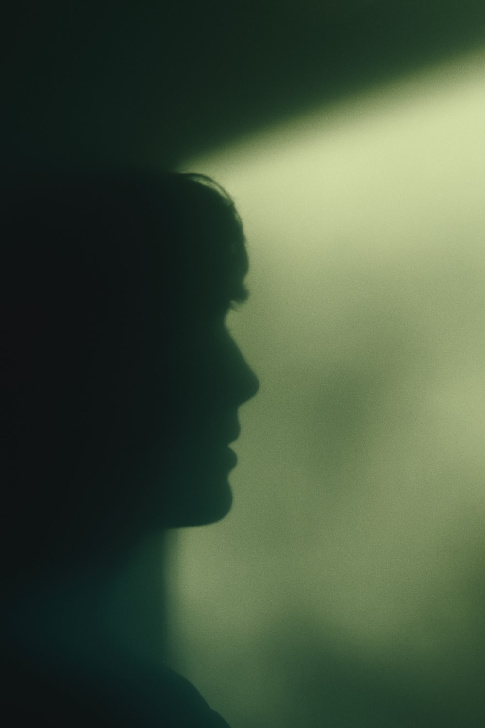 silhouette of womans face