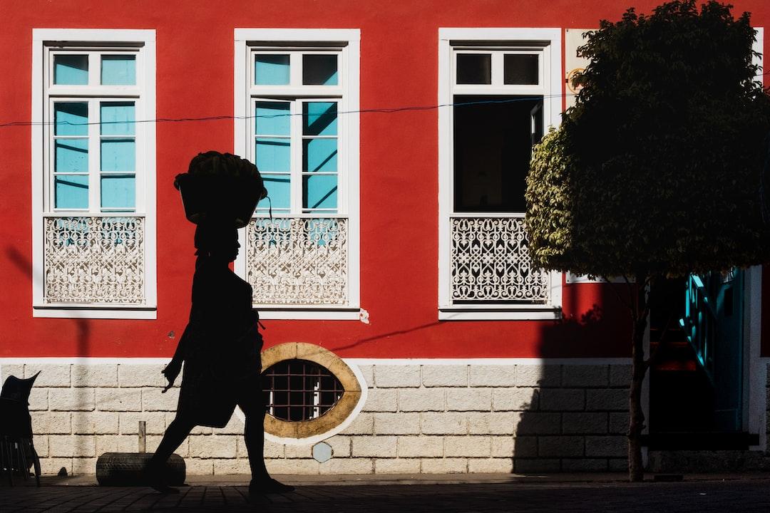 Black Dog Statue Near Red Building During Daytime - unsplash