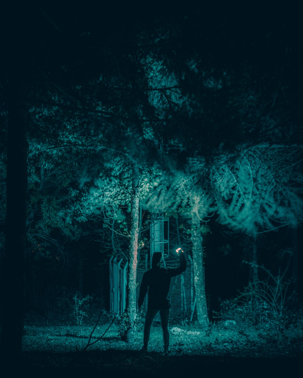 man in black jacket standing in forest