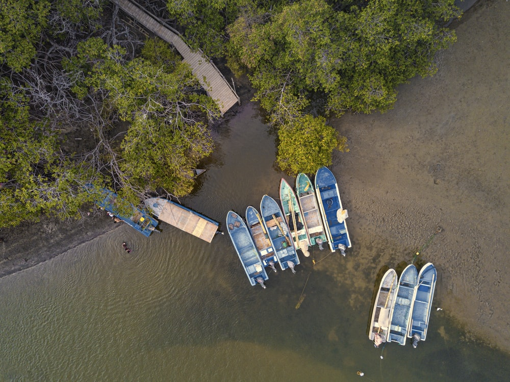 aerial view of blue and white boat on river during daytime