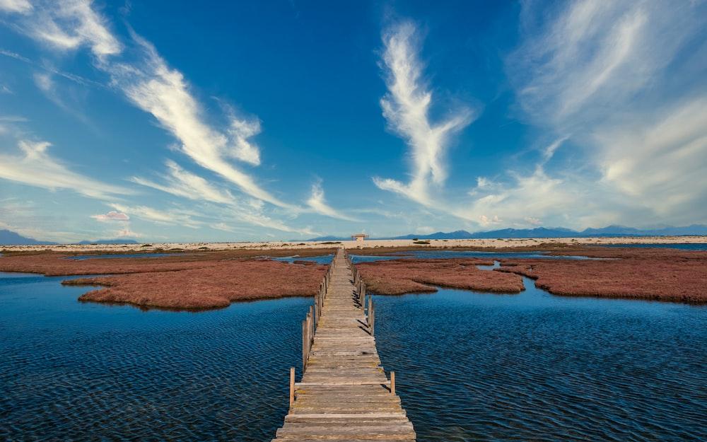 brown wooden dock on river under blue sky during daytime