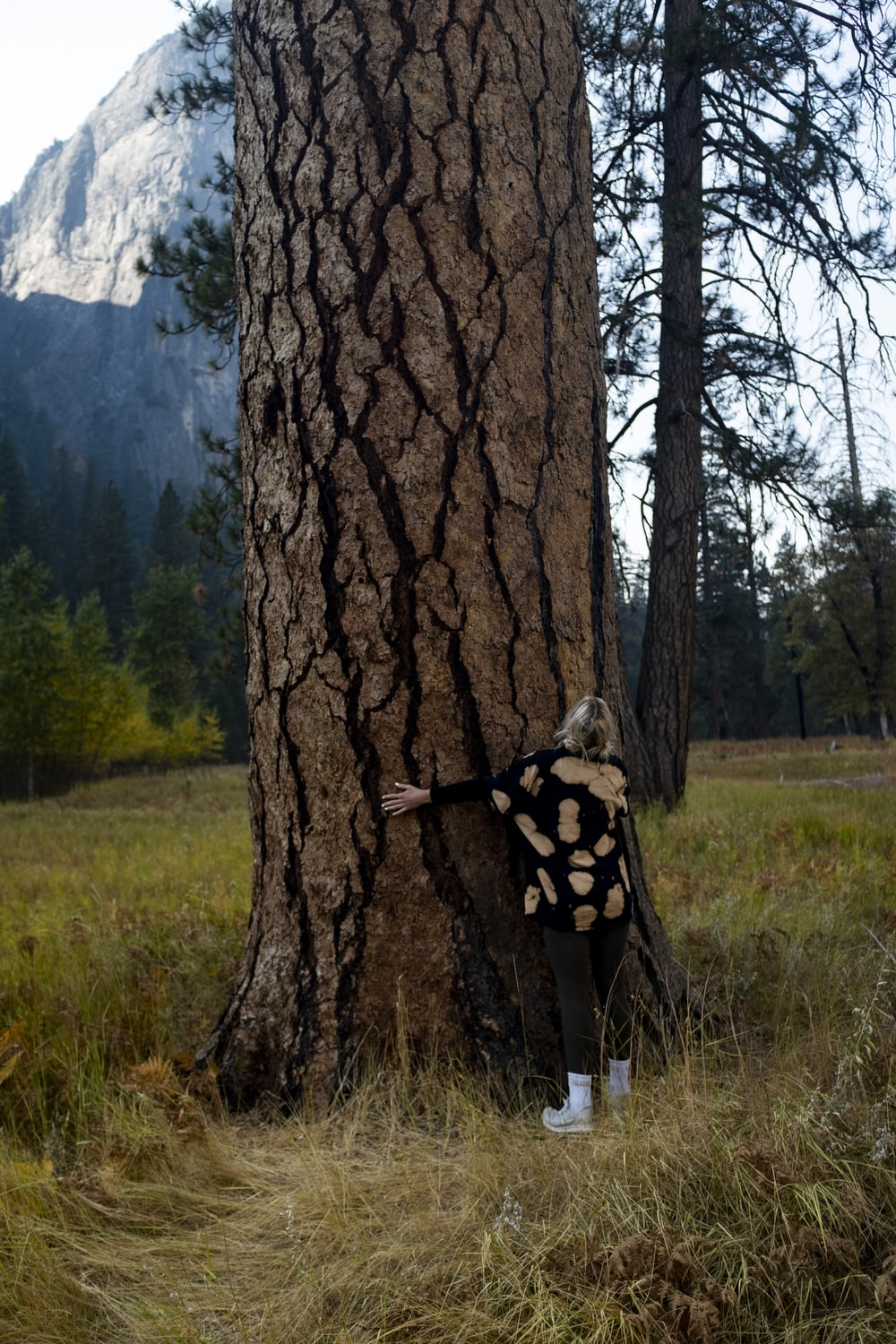woman in black and white polka dot dress standing beside brown tree during daytime