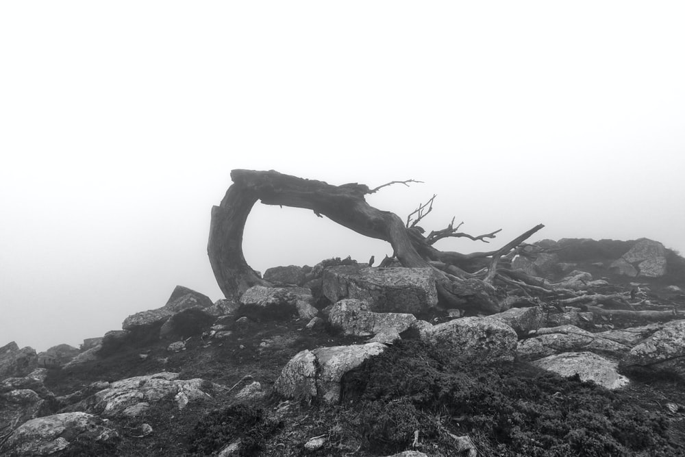 gray scale photo of a man standing on a rocky hill