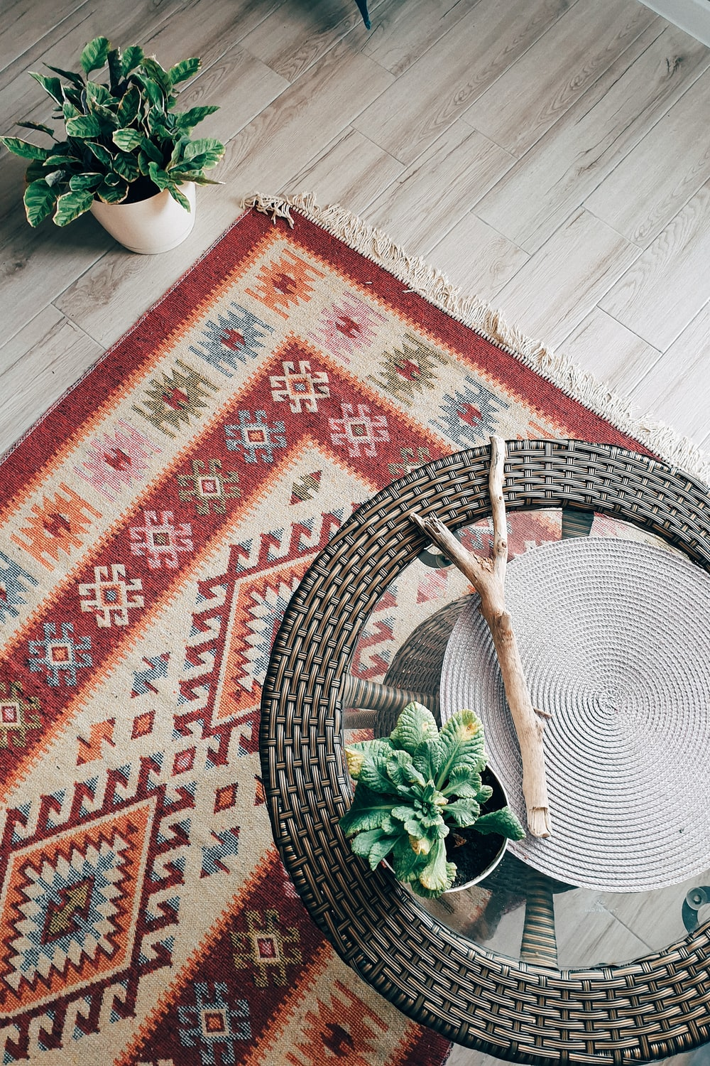 green plant on red and white area rug