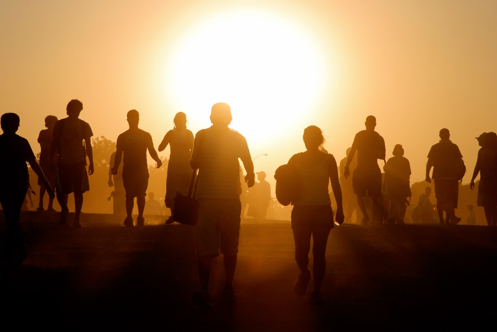 silhouette of people standing on brown sand during sunset