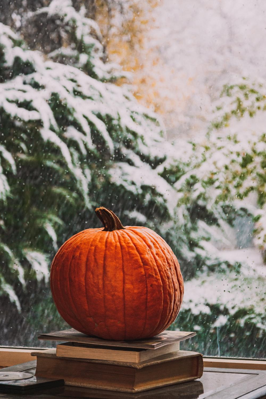 orange pumpkin on black and white surface