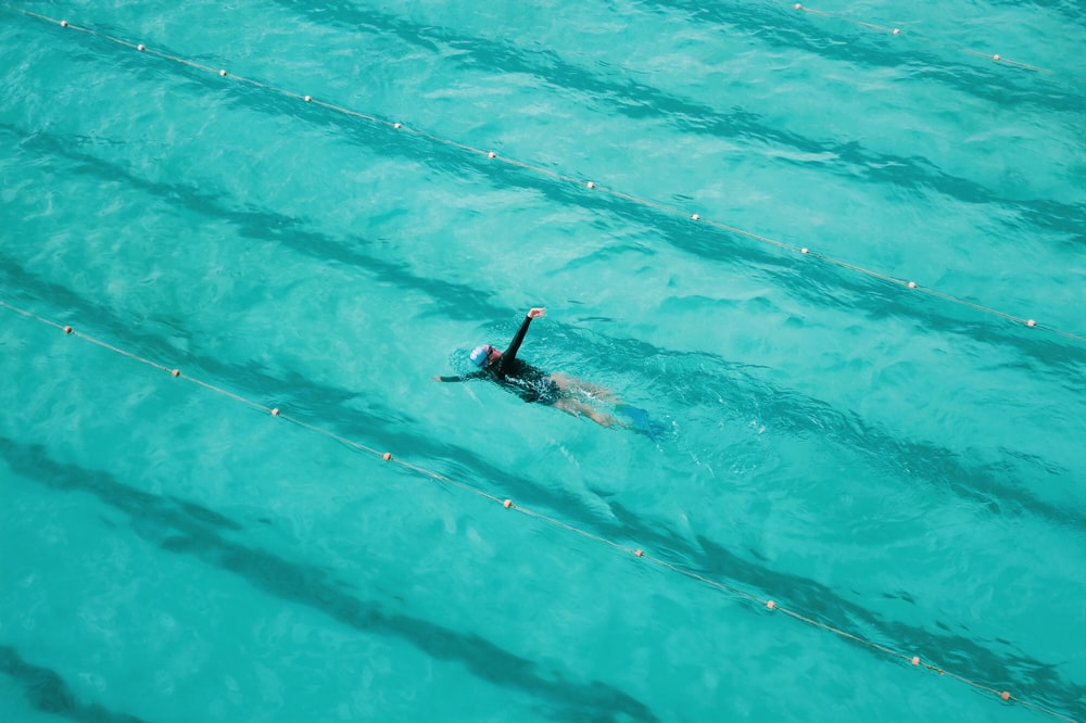 man in blue and black wetsuit swimming on blue water