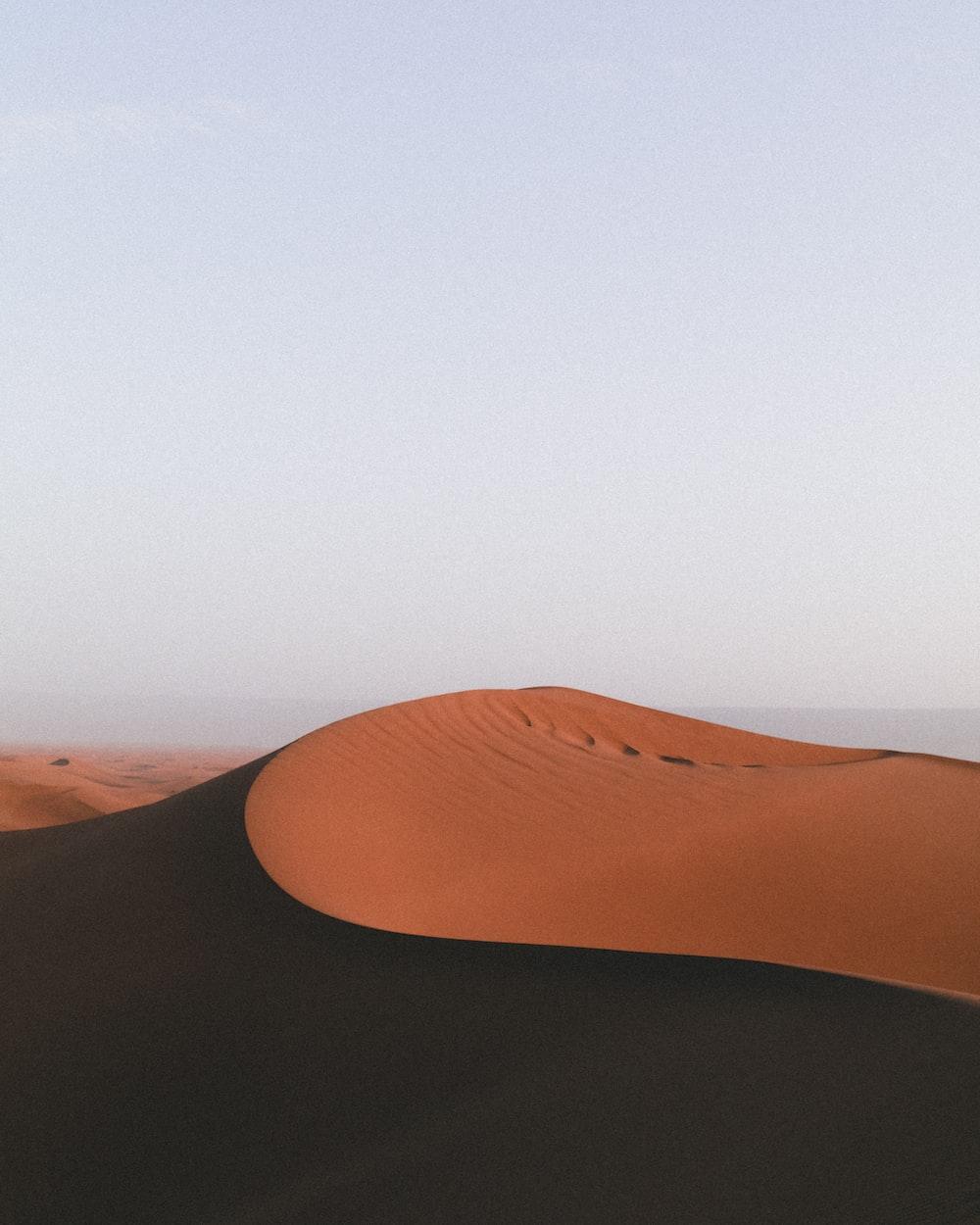brown sand beach during daytime